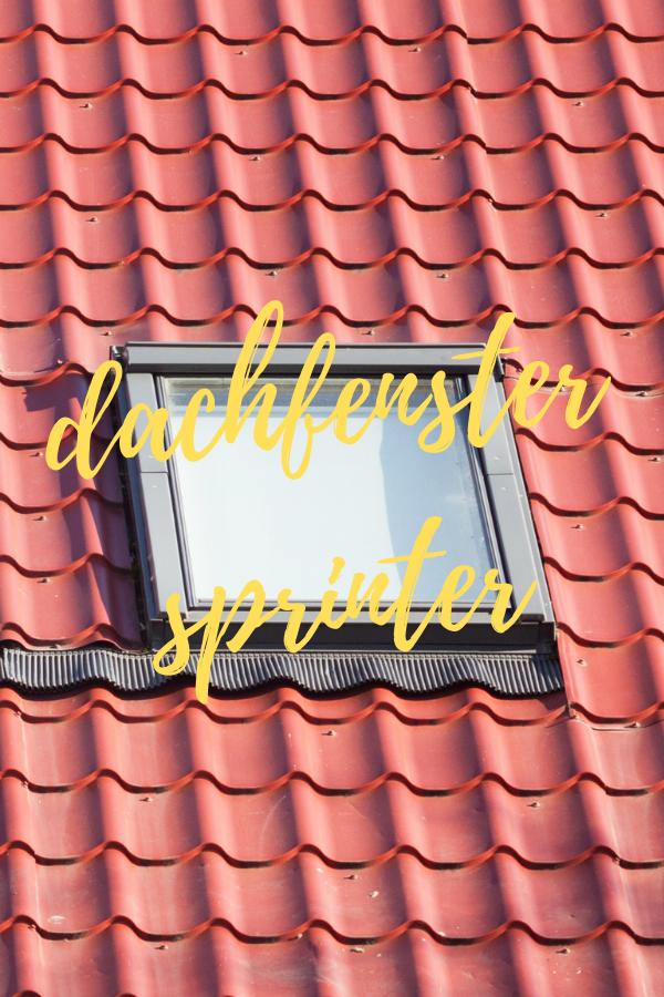 dachfenster sprinter