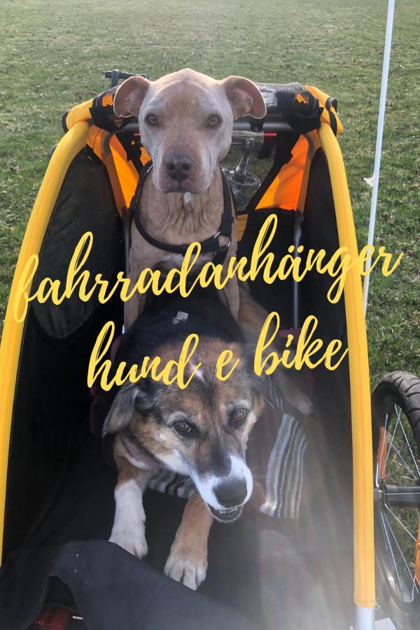 fahrradanhänger hund e bike