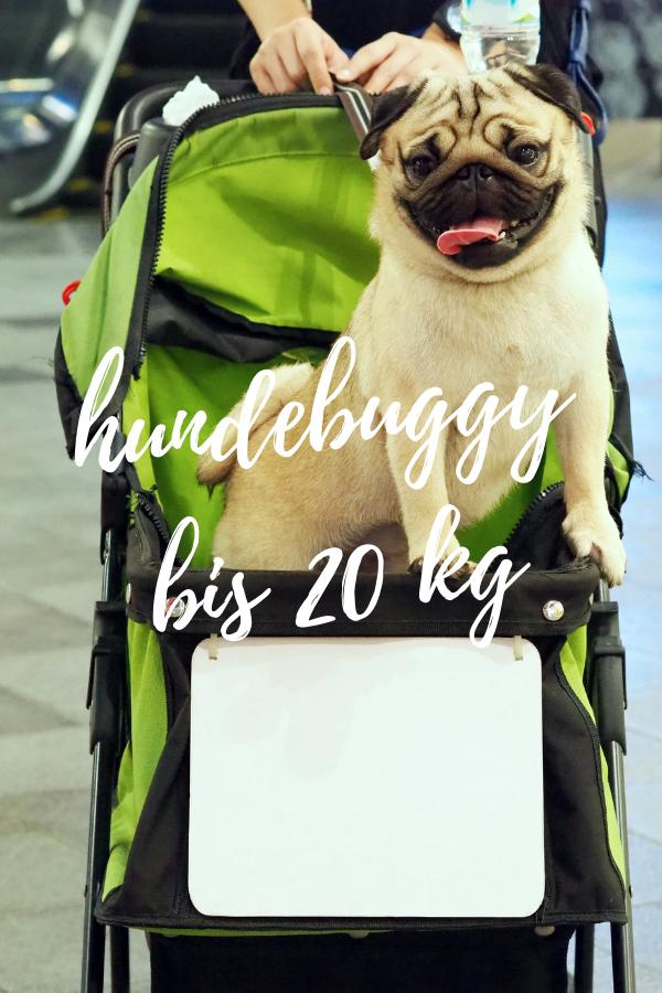 hundebuggy Größe xxl