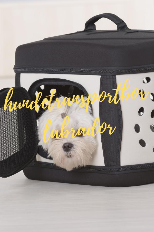 hundetransportbox labrador
