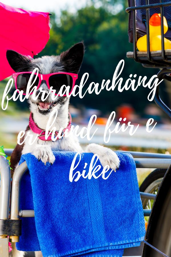 fahrradanhänger hund für e bike